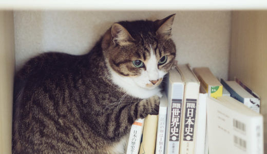 Amazonマンガ本棚で Kindleマンガを手軽に読む